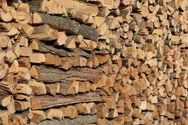 Bando assegnazione legna da ardere