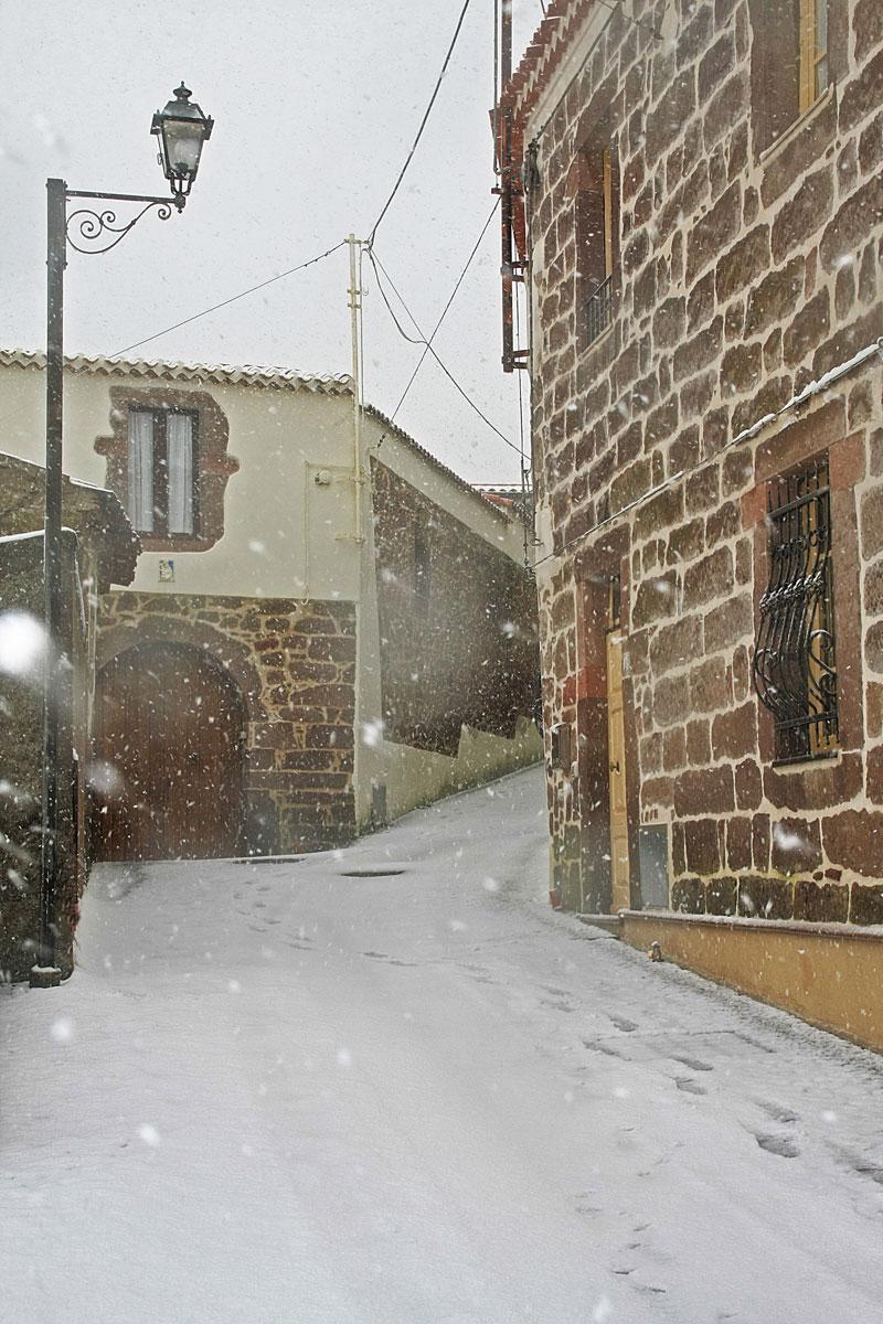 Neoneli sotto la neve 2012